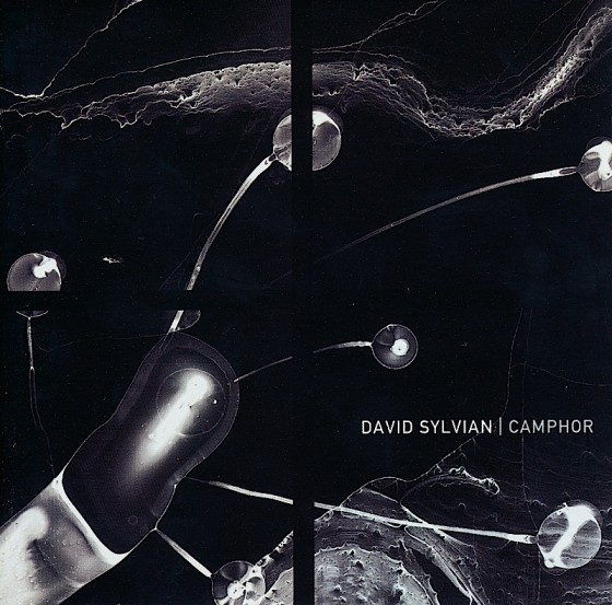 David Sylvian CamphorVirgin Records 2002 Photography by Charles Lindsay Art & design by Mills Co-design by Michael Webster