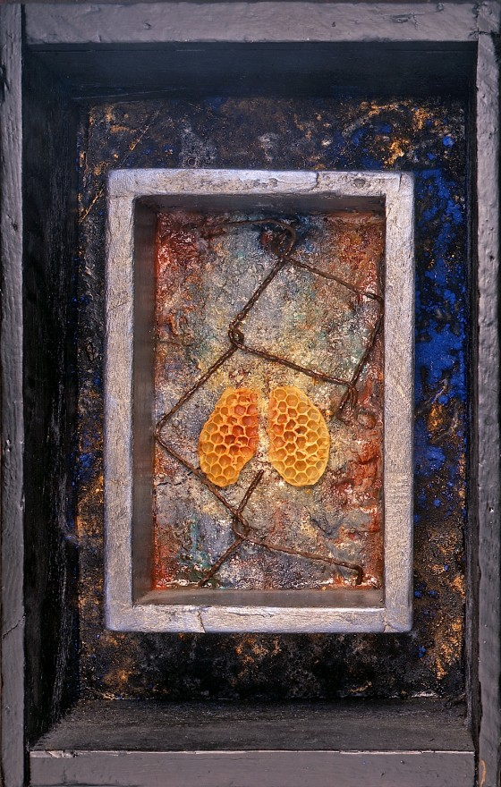 Air (Community) Oils, acrylics, plaster, bronze powder, earth, rusted metal, honeycombs, wood, in box 19.5 x 33 x 12 cm 1997