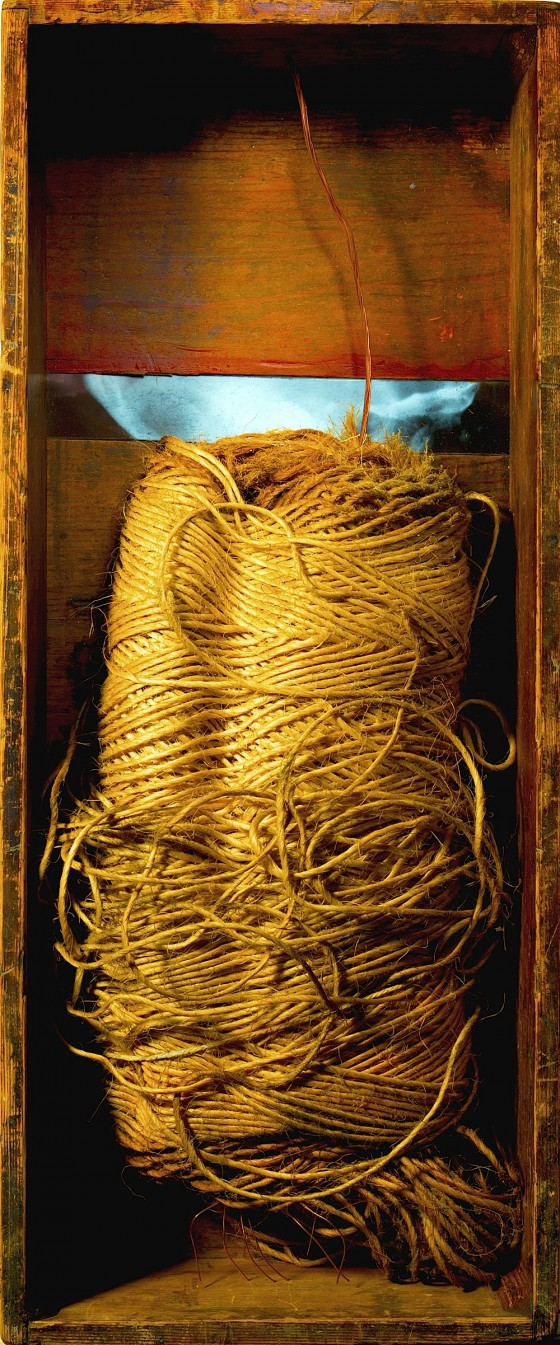 Bound 2013 Found bale of twine, copper, acrylics, in wooden box 61 x 25 cm
