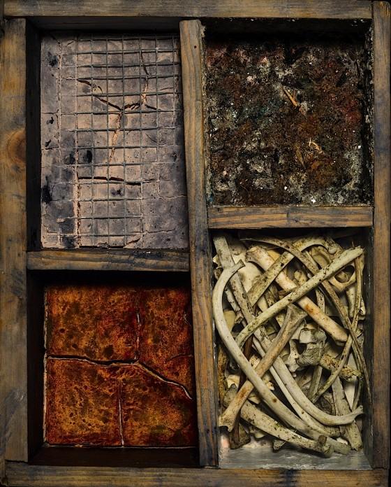 Diamonds In The Dust 2013 Plaster, earth, oils, acrylics, bones, wire, in wooden box 35.5 x 28 x 15 cm