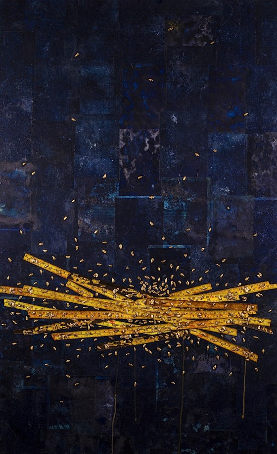 Different Skies 2013 Acrylics, carbon paper, chemicals, steel rulers, hand-painted sunflower seeds, on wood 99 x 61 cm