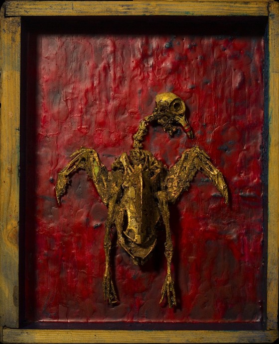 Dreaming Of Thermals 2013 Plaster, acrylics, wax, bird skeleton, earth, gold leaf, in wooden box 35.5 x 28 x 15 cm