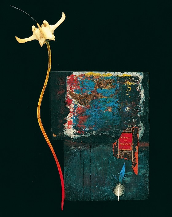 Gilding In The Wind 1990 Oils, acrylics, earth, bone, book cover fragment, wood 38.5 x 18 x 8 cm