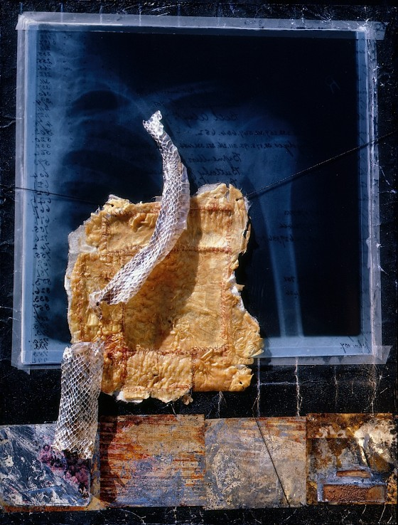 Needle to Needle (Reveal) 1997-2001 Spray paint, aluminium foil, X-ray, chicken skin, snake skin, metal, on wood 40 x 30 x 5.5 cm