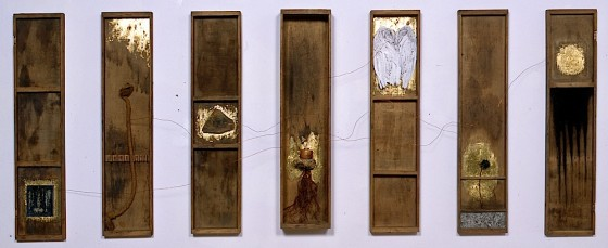 Those Who Don't Know What To Do Do What They Know 2001 7 wooden carpenter's drawers containing spray paint, gold leaf, coal dust, ash, copper wires, in pot fused in earth, tree roots, stone, carbon, bird's wings, blue rose, lady's vanity case, salt, rope and sand Each drawer 87 x 19 cm, variable depths; overall dimensions 87 x 247 cm