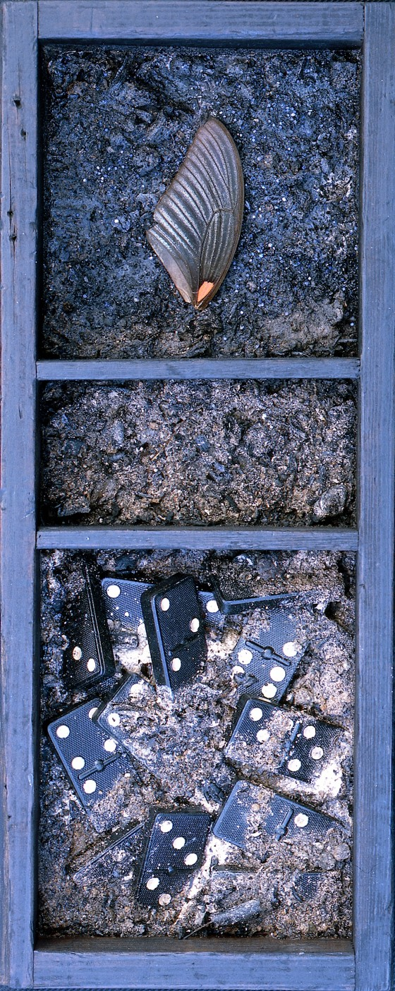 Velocity or Pause? 1996 Acrylics, plaster, ashes, coal dust, butterfly wing, dominoes, in wooden box 33 x 13.5 x 10 cm