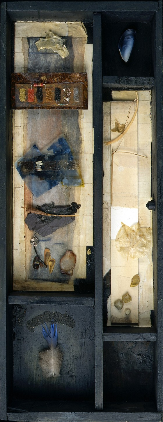 We Murder To Dissect (Box) 1996 Oils, acrylics, plaster, ash, coal dust, stones, poppy seed heads, slate, glass, computer parts, sand, paper collage, feather, shell, petals, watercolour, bone, microscope slide, electrical wire, leaf, mica, salt, on card and wood in wooden box 45 x 17.5 x 6 cm Private collection UK