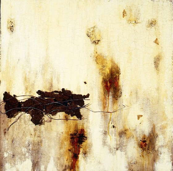 Wound 1994 Oils, acrylics, plaster, wax, blood, insects, moths, rusted metal, copper wires, bandaging, on wood 61 x 61 cm Private collection USA