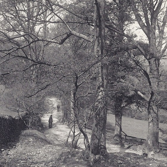 Stepping Stones, Rydal