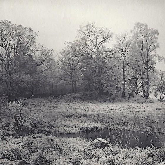 hoar frost rydal