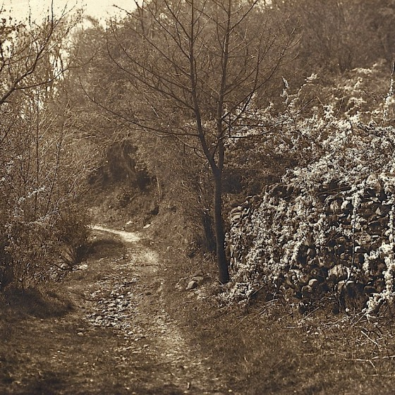 coffin trail to grasmere